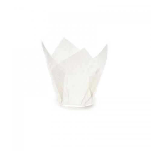 Τουλίπες Λευκές Πακ 100τμχ